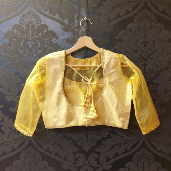 Saree blouse with sequines