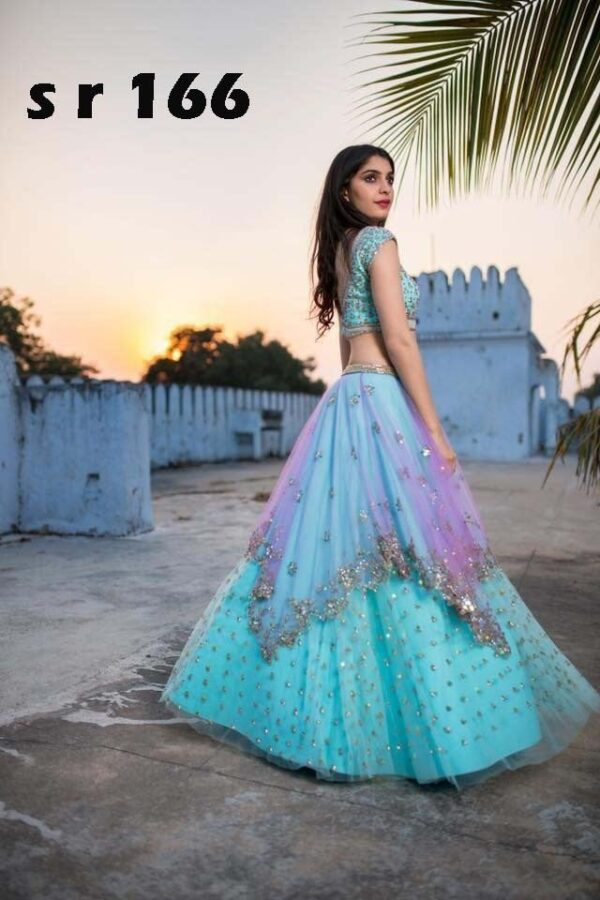 Lehenga with embroidery