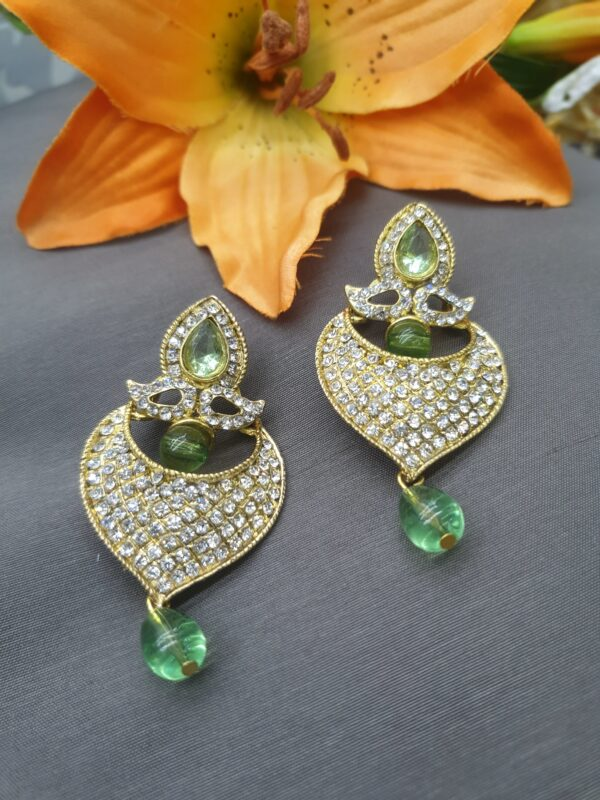 Earring with stone work