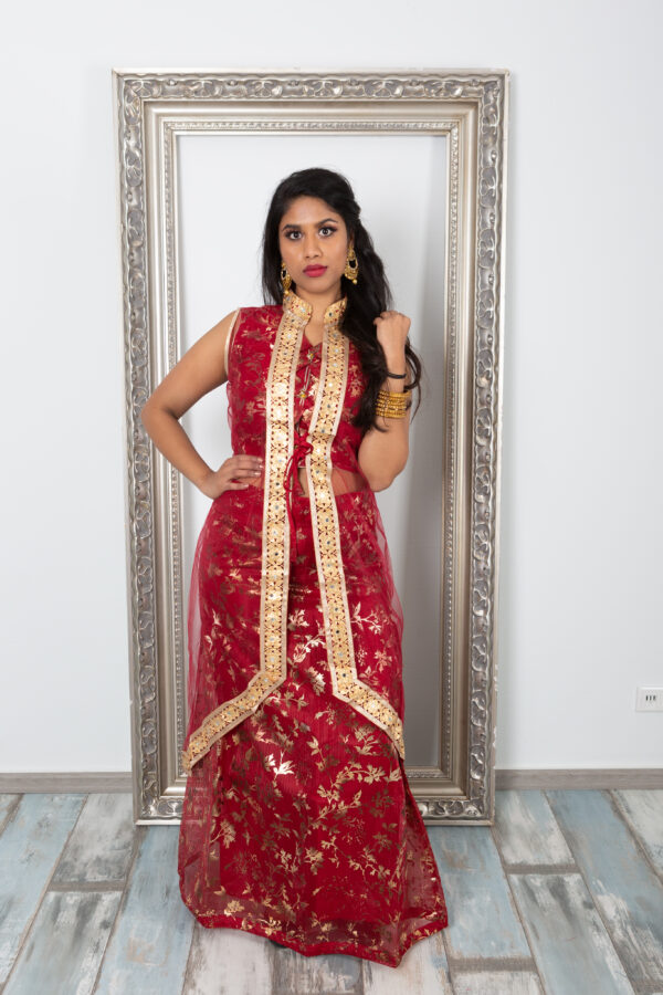 Fancy and elegant lehenga